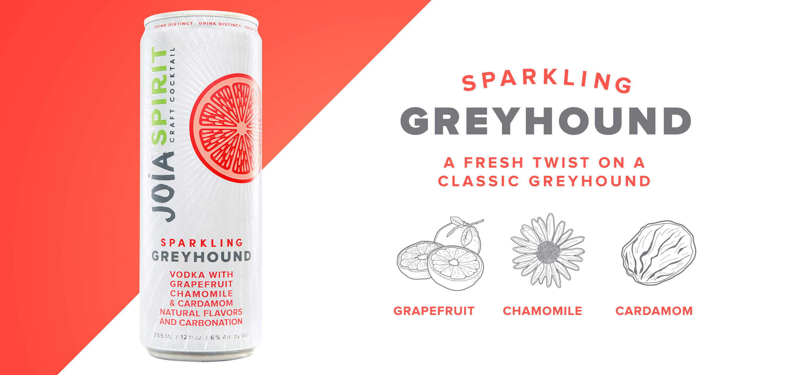 greyhound_closeup